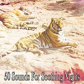 50 Sounds For Soothing Nights by Bedtime Baby