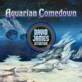 Aquarian Comedown by David James Situation