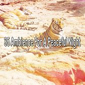35 Ambience For A Peaceful Night de White Noise Babies