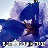 33 Optimised Calming Tracks by S.P.A