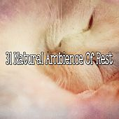 31 Natural Ambience Of Rest by White Noise For Baby Sleep