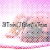 30 Tracks Of Nature To Dream de Sounds Of Nature