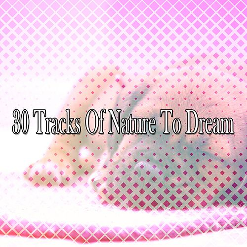 30 Tracks Of Nature To Dream by Sounds Of Nature