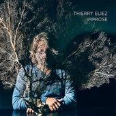 Improse von Thierry Eliez