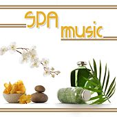 SPA MUSIC (Relaxing Music for Massage, Relaxation, Ayurveda, Meditation and Yoga) di Various Artists