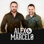 Papel Dourado de Alex e Marcelo