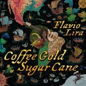 Coffee Gold Sugar Cane by Flavio Lira