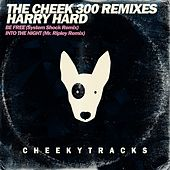 The Cheek300 Mixes (Big D vs. Harry Hard) - Single by Various Artists