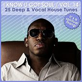 I Know U Got Soul, Vol. 14 - Deep & Vocal House Tunes by Various Artists