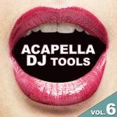 Acapella DJ Tools Vol. 6 by Various Artists