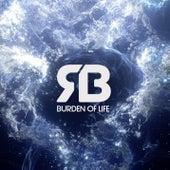Burden of Life by Rameses B