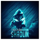 Shaolin by Flowmotion