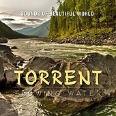 Flowing Water: Torrent (Nature Sounds for Relaxation, Meditation, Healing & Sleep) by Sounds of Beautiful World