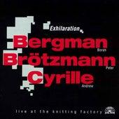 Exhilaration by Borah Bergman