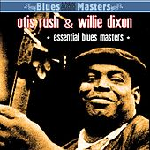 Essential Blues Masters von Various Artists