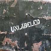 Hit It While You Can by Unlabeled