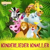 Kinderlieder Knaller (Kinder Kult Hits zum Abfeiern und Mitsingen) von Kiddy Cats