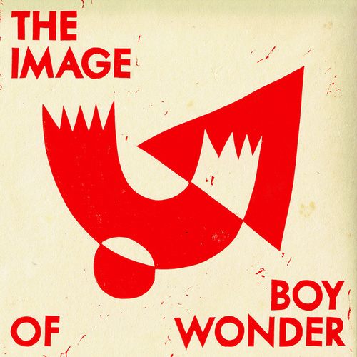 The Image Of Boy Wonder by Faces On TV
