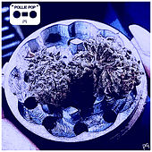 28 Grams, Vol. 17 (Screwed) by Pollie Pop
