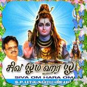 Siva Om Hara Om by S.P.Balasubramaniam