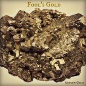 Fool's Gold de Andrew Gold