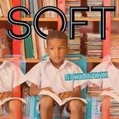 Ti Gwadloupéyen de Soft