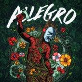 Allegro, Vol. I by Allegro