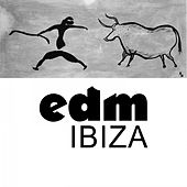 EDM: Ibiza von Various Artists