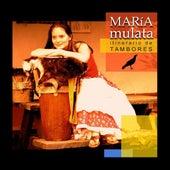 Itinerario De Tambores de Maria Mulata