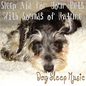Sleep Aid for Your Pets With Sounds of Nature; Music for Dogs & House Hold Pets, Sleep Lullaby by Dog Sleep Music