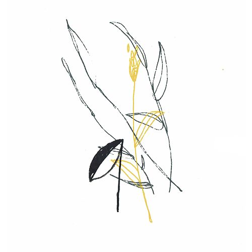 Slow Spark, Soft Spoke by Benoit Pioulard