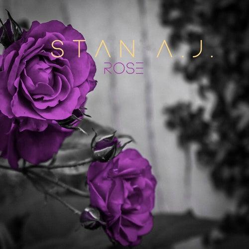 Rose by Stanaj