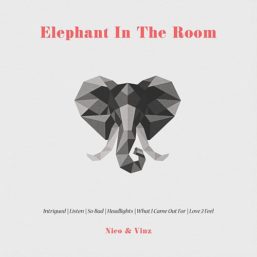 Elephant in the Room de Nico & Vinz