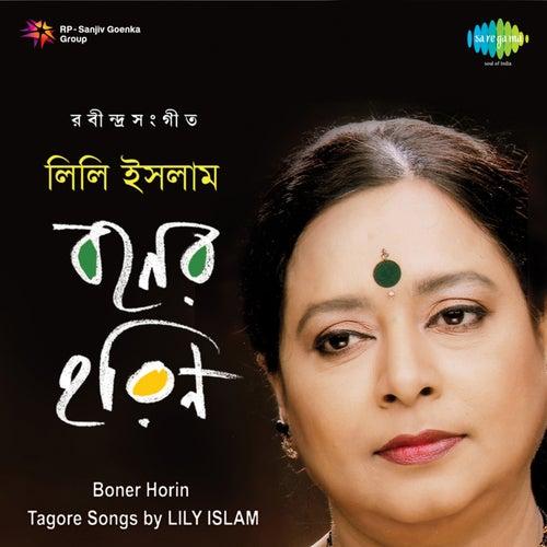 Boner Horin - Lily Islam by Lily Islam