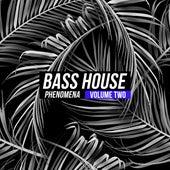 Bass House Phenomena, Vol. 2 de Various Artists