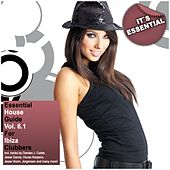Essential House Guide Vol. 6 Pt.1 - For Ibiza Clubbers (Incl. Nonstop DJ-Mix) de Various Artists