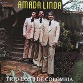 Amada Linda by Trio Los 3 de Colombia