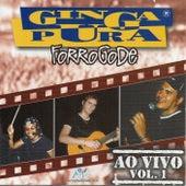Forrogode, Vol. 1 (Ao Vivo) de Ginga Pura