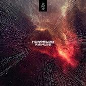 Homistaa by Keikari