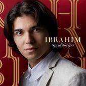 Sprid ditt ljus by Ibrahim