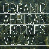 Organic African Grooves, Vol.37 by Various Artists