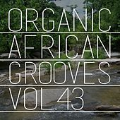 Organic African Grooves, Vol.43 by Various Artists