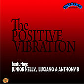 Positive Vibration by Various Artists