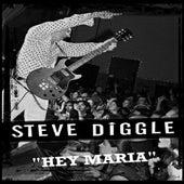 Hey Maria by Steve Diggle