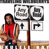 Any Road by Ukulele Ray