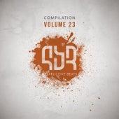 Destructive Compilation, Vol. 23 - EP by Various Artists