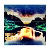 Douro Conect - Single de Various Artists