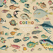 The Much Much How How and I by Cosmo Sheldrake