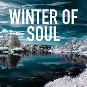 Winter Of Soul by Various Artists