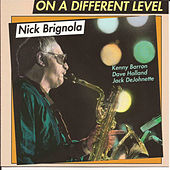 On a Different Level by Nick Brignola